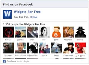 Facebook Widget img-1